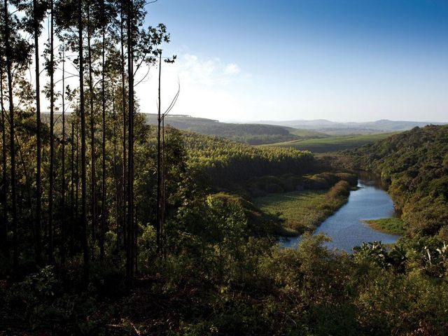 Secure Forest Estate | Blythedale